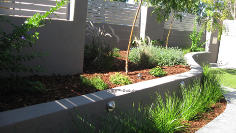 Mount pleasant landscaping project constructed by think for Courtyard landscaping australia